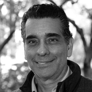 Luis A. Navarro Linares